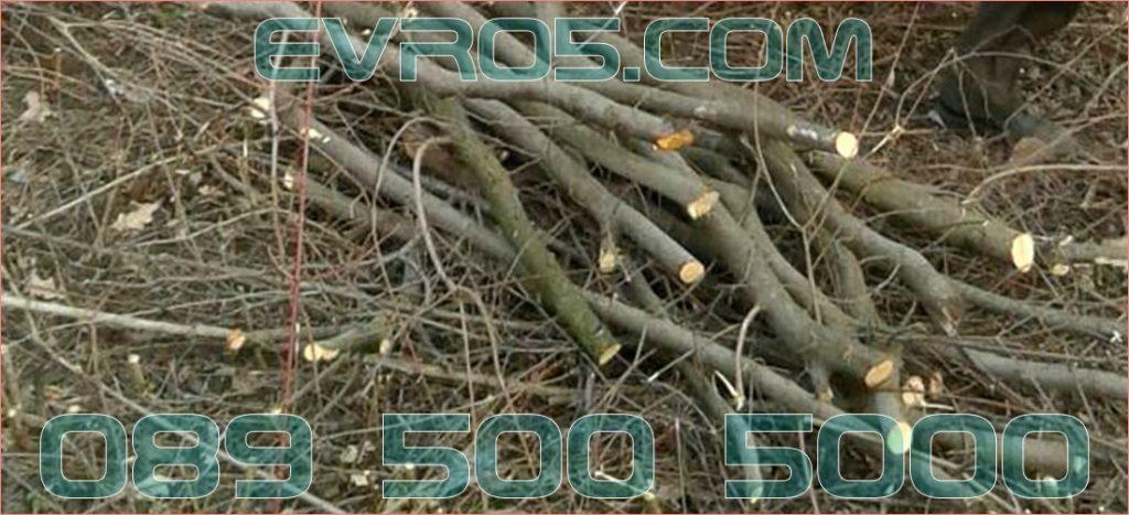 извозване на храсти и дървесни отпадъци